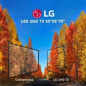 "LG 삼성 TV 즉시할인 최대 22만원 55"" 65"" 70"" 75"" 86"""