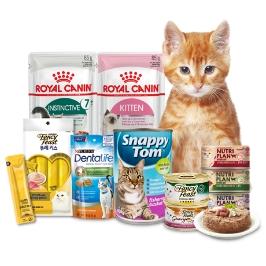 [더싸다특가] 고양이 마약간식 토로토로! 끊을 수 없는맛! 방사능걱정없이 급여! 대용량으로 든든!