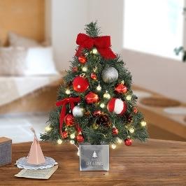 [더싸다특가] 천연 자작나무 벽트리 풀세트! 세트 하나로 크리스마스 준비 끝 ! 다샵 크리스마스 벽트리 풀세트