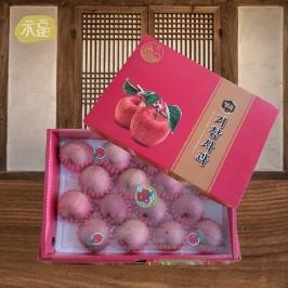 [게릴라특가] 고당도 사과10kg 특가 /설날선물세트 사과 / 배 / 한라봉 선물할땐 여기여기!