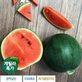 [게릴라특가] 애플미니수박 2통(2~2.5kg)
