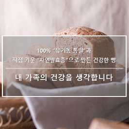 [쇼핑빅딜리그]  유기농100%통밀빵(자연발효건강빵 식단조절운동빵 통곡물식빵 식사밥빵 비건빵 무화과크랜베리통밀식빵 호밀빵)