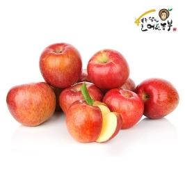 아침이슬사과 가정용 부사 사과 10kg 겨울 경북 10키로 못난이 흠집 꿀사과 맛있는 빨간 흠과 햇 과일 가성비 빠른 배송