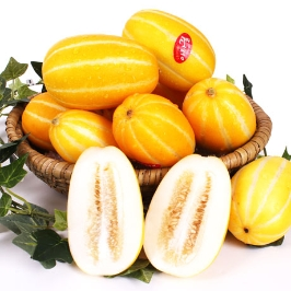[게릴라특가] 2020년 첫 참외 2kg내외, 겨울에 맛보는 여름별미~ 하우스참외로 당도 100% 꿀맛 참외,허니참외