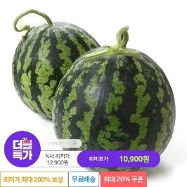 [더블특가] 최대20%쿠폰 // 시원 달콤한 과즙 팡팡 수박 1+1 2통 (8-10kg)