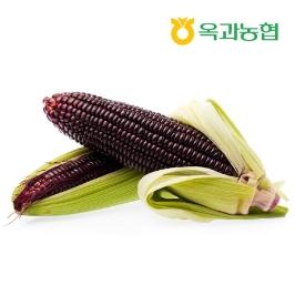 쫀득 냉동 찰옥수수 (홍찰)중 15개 /2개 구매시 40개 발송