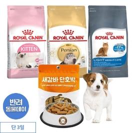 [게릴라특가] 로얄캐닌 고양이 사료 4kg / 10kg 모음전
