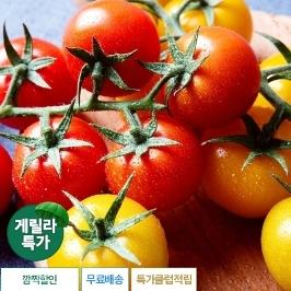 [게릴라특가] 토마토마 송이토마토 낱알 2kg 온라인 최저가 행사!