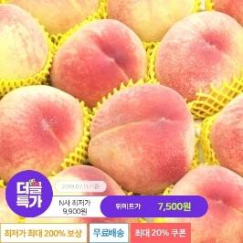 [더블특가] ★선착순 20%★ 달콤말랑 털복숭아 4.5kg 7900원 외