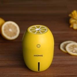 [투데이특가] 무드등 미니 레몬가습기 차량용/휴대용+필터+ USB 도매가 이하 판매!