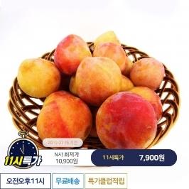 [11시특가] 새콤달콤 경북 후무사 자두 3kg  70g이상