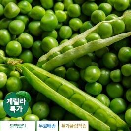 [게릴라특가] 서천 햇 완두콩2kg 특가