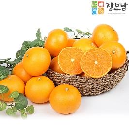 [투데이특가] 장보남 꿀 천혜향 2.5kg 9과 // 상큼하고 달달~해서 맛이 2배