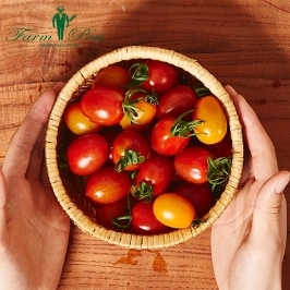 [더싸다특가] 최상급 대추방울토마토 1,2번과 1kg, 2kg