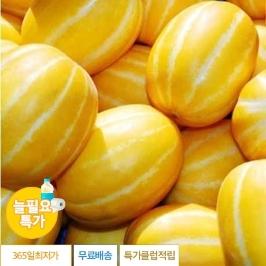 [늘필요특가] 정품 성주에서 모셔온 귀한 성주 꿀 참외10kg 꼬마