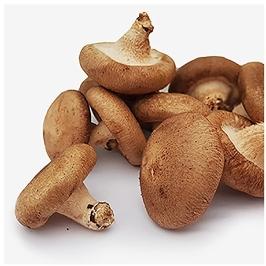 평창 생 표고버섯 C중 1kg [평창사람들]