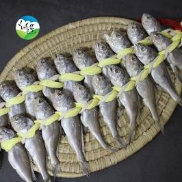 법성포 영광굴비 40마리(14~16cm내외/1.4kg내외)