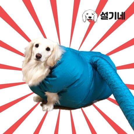 여자옷 남자옷 쇼핑몰 설기네 반려동물 드라이자켓 (15분 건조OK)