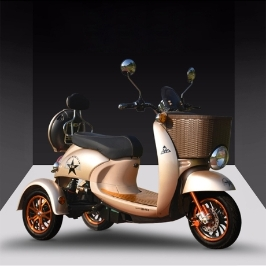 라짱  - BEMA235 옵션1-48V 3륜 삼륜 전동스쿠터 전기스쿠터 전동킥보드 전동자전거 삼륜전동스쿠터 3륜오토바이 추천