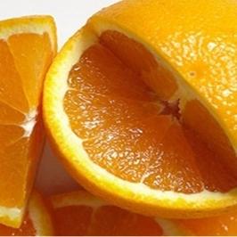 [게릴라특가] 네이블 오렌지 20과 대과 시즌특가!
