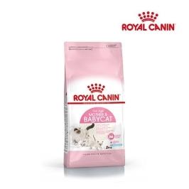 [원더배송] 로얄캐닌 고양이사료 베이비캣34 10kg