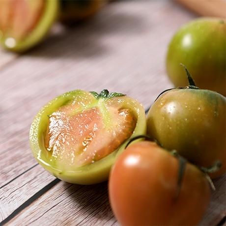 지금이 제철 ! 부산 대저 짭짤이 토마토 / 못난이 토마토(실속형1~4번과) 2.5kg