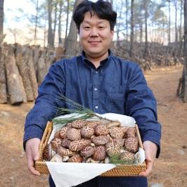 장흥 생표고버섯 1kg 유기농 참나무