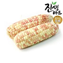 벌크포장 찰옥수수 상품 홍찰 20개