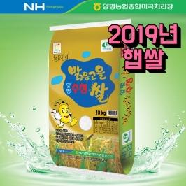 [영인농협] 18년 생산쌀 삼광 단일품종 아산맑은 쌀 10kg
