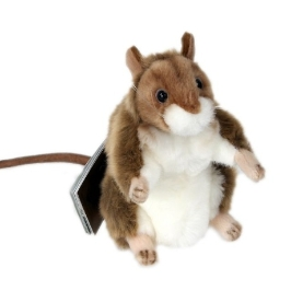 [1300K] [한사토이] 3597번 생쥐 Gelbhals Mouse/17*32cm