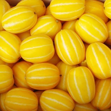 성주 꿀 참외 6kg (랜덤과)