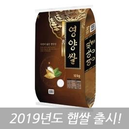 [즉시할인]19년산 햅쌀 영양쌀 10kg