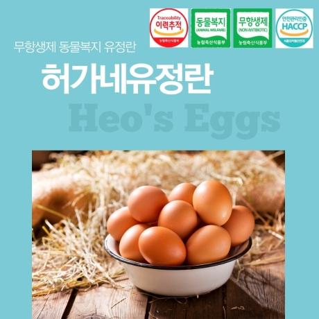 무항생제 동물복지 유정란 계란 달걀 20구