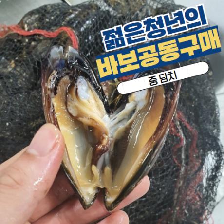 [바보공구] 자연산 담치 1kg (15미 내외, 자연산 홍합, 섭국)