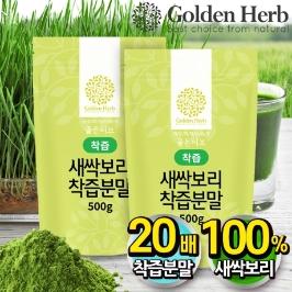 골든허브 새싹보리 착즙 분말 가루 1kg(500g+500g) / 어린잎 보리순 농축 분말
